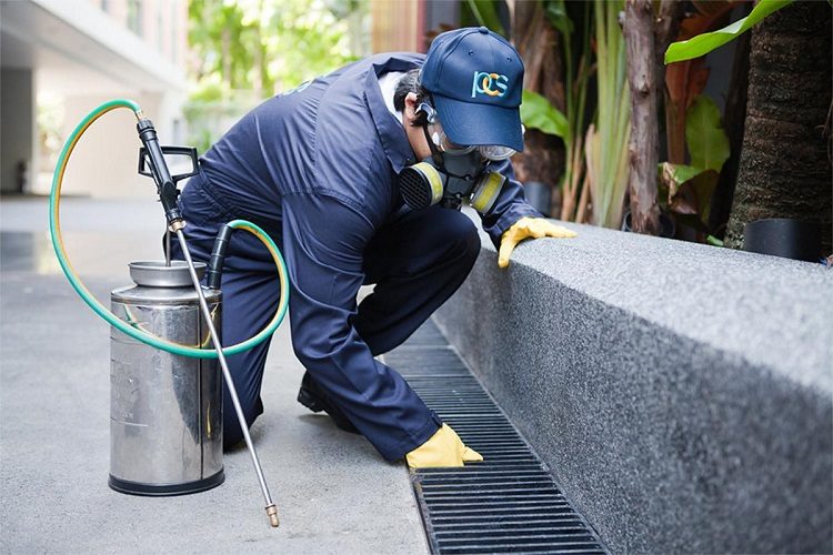 The Advantages Of Hiring A Professional Pest Control Company
